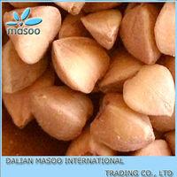 Dried buckwheat grain, brown and green kernel, China,Inner Mongolia 2013 crop
