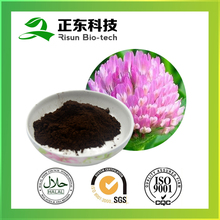 Pure herbs extract powder 8% Isoflavones Red Clover Extract