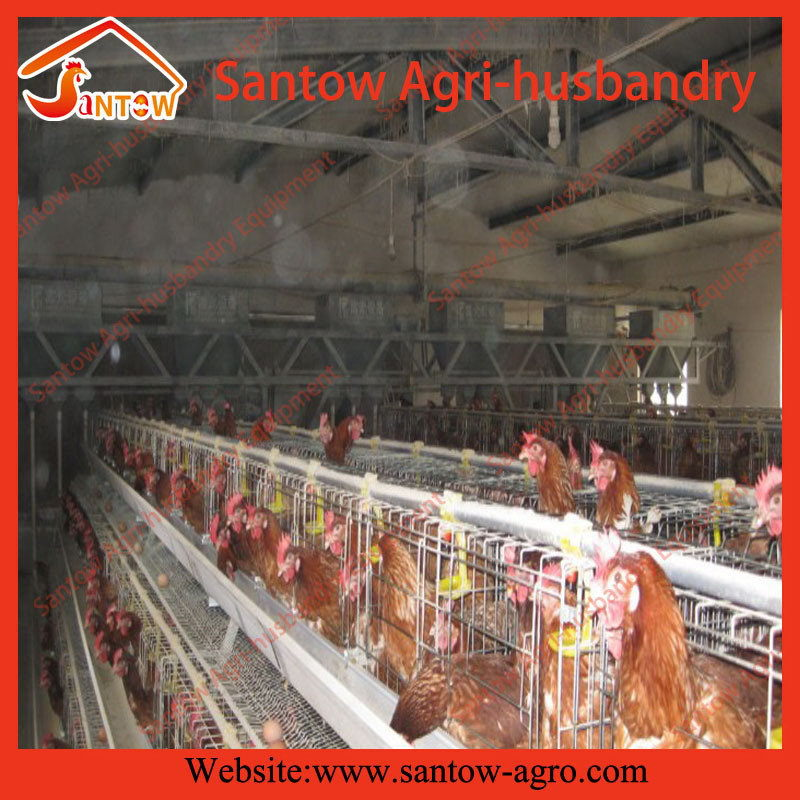 Hot galvanized multi stacking commercial chicken layer house chicken promotional products