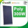 Bluesun Price Solar Panel 300W Backsheet Black Poly 300watts Solar Panels