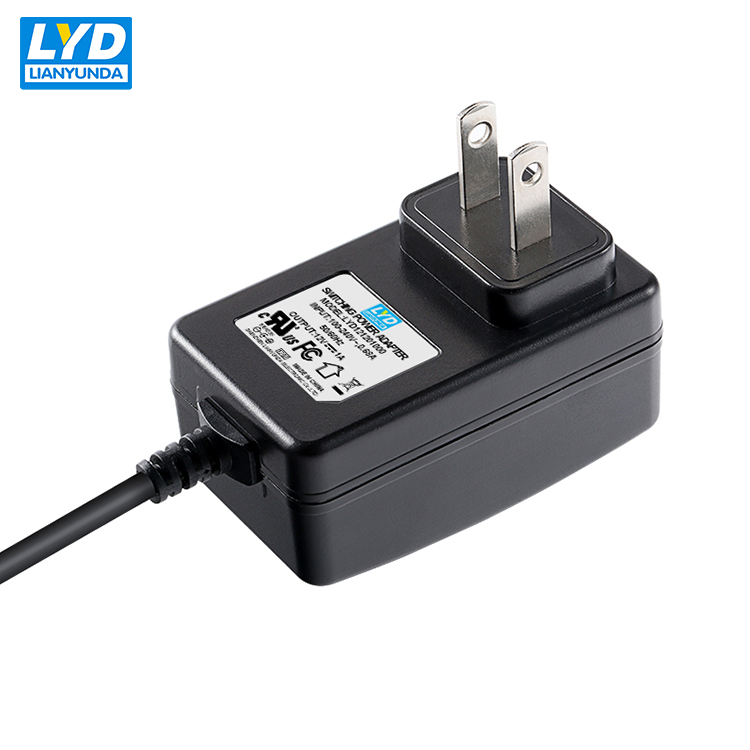 5V-24VDC input 230Vac 12V 1000ma power supply for medical equipment 12V 1A adapters