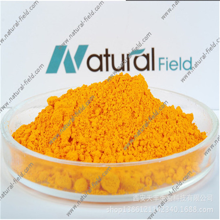 Rhubarb Extract Powder Chrysophanol 98%