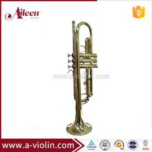 Golden Lacquered Yellow Brass Bb key Student Trumpet (TP8001G)