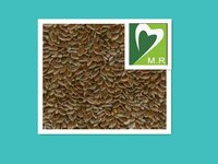 GMP factory suply Flaxseed Extract with Secoisolariciresinol