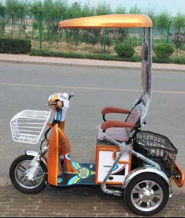 Three Wheels Electric Handicapped Bike 48V 550W 20Ah Electric Tricycle For Passenger Or Elderly