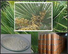 Top Quality 100% natural white saw palmetto extract powder