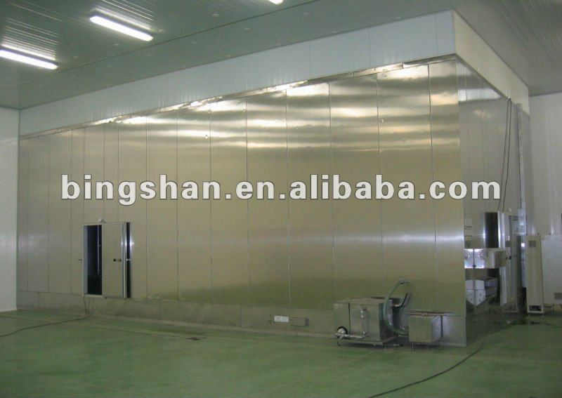IQF Cryogenic Tunnel Freezer