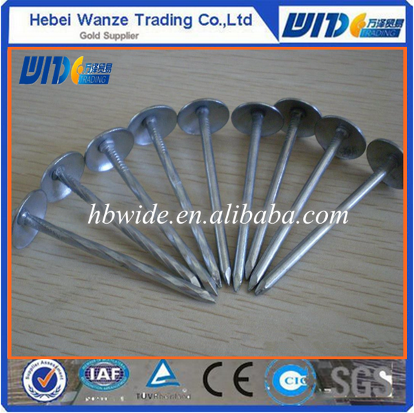 China high quality umbrella head roofing nail