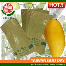 Fuji agriculture Jinhuang Mango with two layers fruit protection bag
