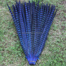 70-80cm dyed pheasant feather all color