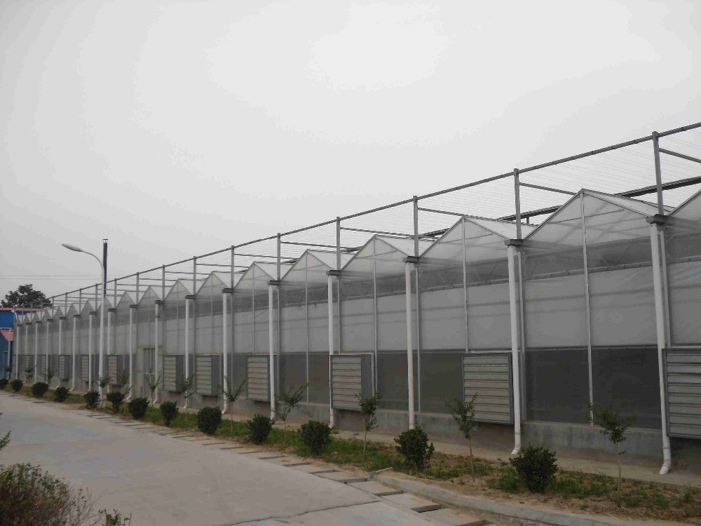 commercial greenhouse for hydroponics system