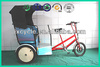 3 wheel electric tricycle for adult