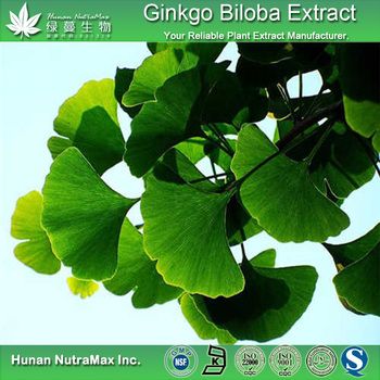 Factory price water soluble Ginkgo Biloba Leaf Extract