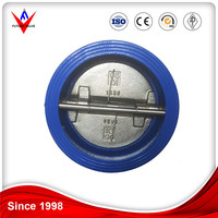 Check Valve PN16 Cast Iron Wafer