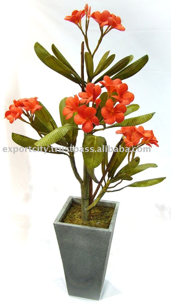 Artificial flowers plant, setting and stem ( hawaiian plumeria frangipani )