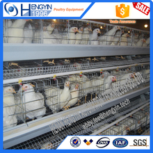 Egg laying chicken farm industrial design for sale