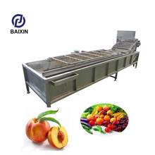Fully automatic cabbage washing machine vegetable cleaning machine