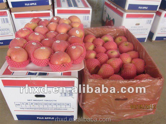 New crop Chinese Professional Fruit Supplier Fresh Red Delicious Apple/bulk fresh apples