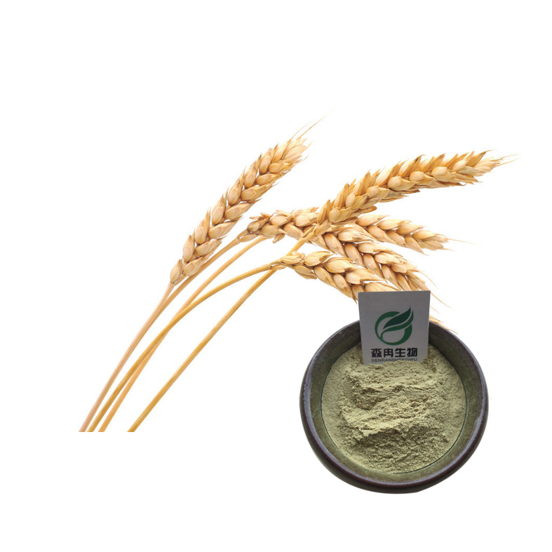 Factory supply 10:1 wheat germ extract for sale
