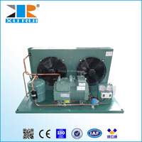 cold room small refrigeration units Bitzer 5HP mini condenser unit for sale