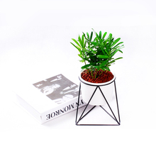 Any Color Metal Iron Wire Flower Pot Stand Plant Pot