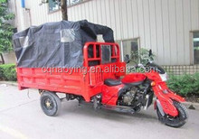 Popular model cargo tricycle with tarpaulin for adult