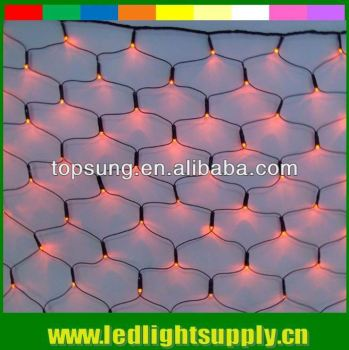 2mx2m led net lights 220V
