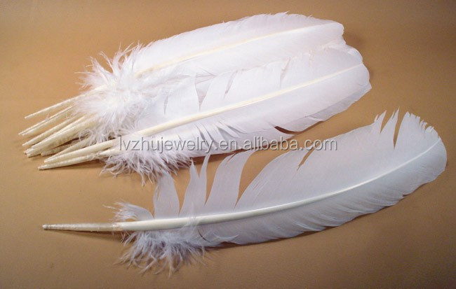 Large White Turkey Wing Feathers LZWILD05