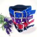 pet leather dog collar