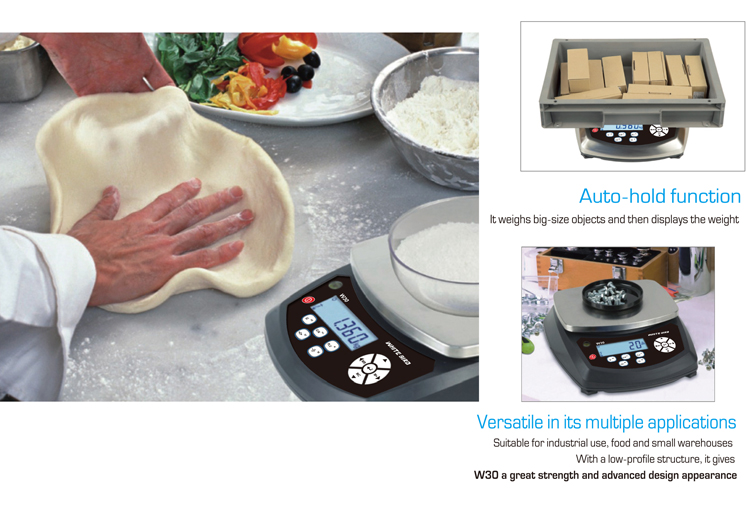30kg accessories factory and fish chicken factory digital electronic weighing scale