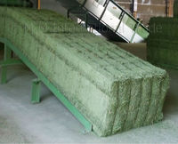 ALFALFA HAY - Premium Grade - Double Compressed Big Bales - High Protein - from South America