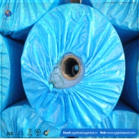 Plastic blue pe pictures for tarpaulin