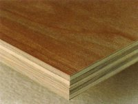 Best Selling plywood timber, LVL timber, poplar plywood timber
