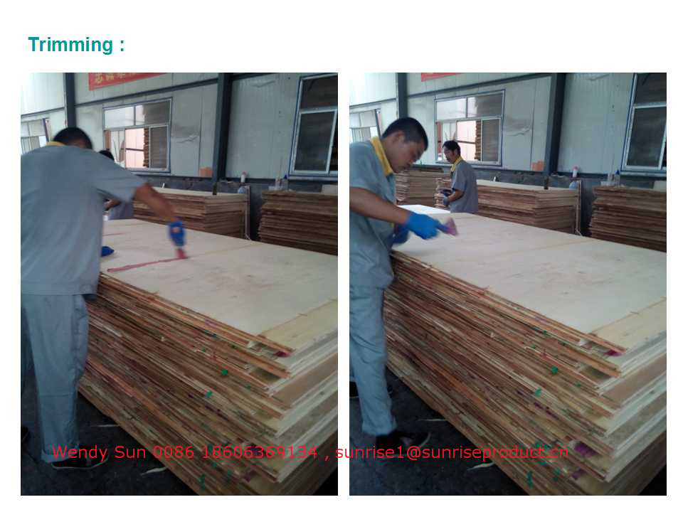 Red film faced plywood, construction plywood