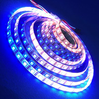 Hot sale APA102 ws2811/2812b/sk6812 Dream Color Led stripe 30/60leds/M Pixels Addressable 5050 full color/magic color led strip