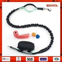 Dog Leash Factory Wholesale Latest Design Nylon Bungee Dog Leash Tie-in Poop Bag