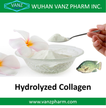 Wholesale Fish Collagen Peptide Hydrolyzed Fish Collagen Powder
