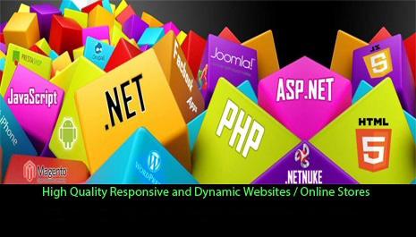 High Quality Responsive and Dynamic Website / Online Store