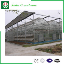 china manufacturer muti span agricultural plastic film greenhouse for vegetable and flower growth