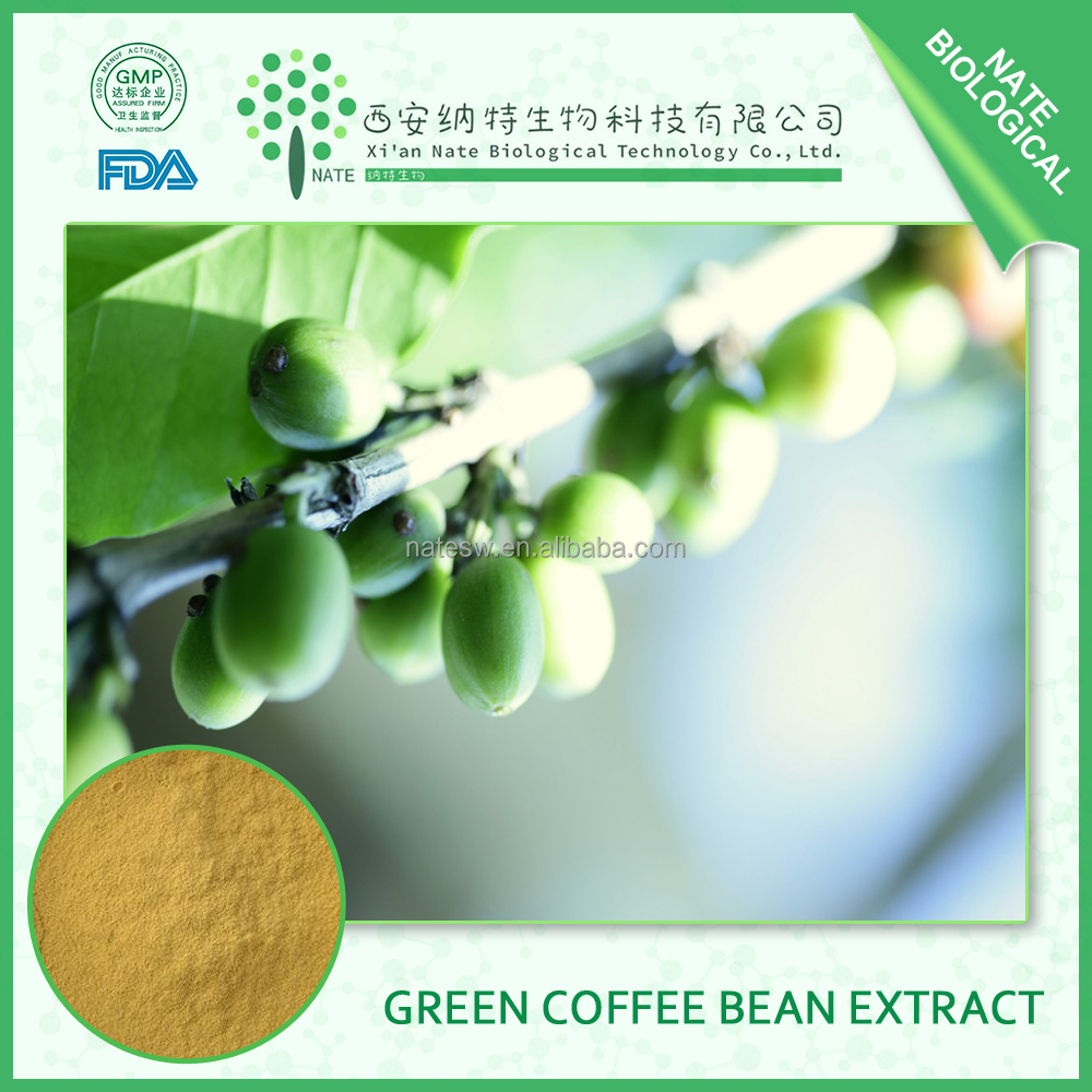 wholesale products green coffee bean chlorogenic acid extract 70% by HPLC