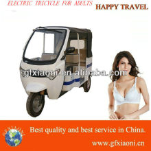 2013 hot model electric tricycle electric tricycle for sale