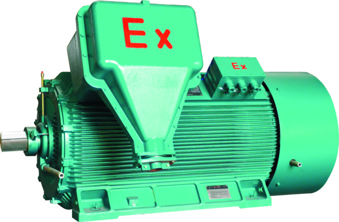 YB2 high voltage explosion-proof three phase induction motor