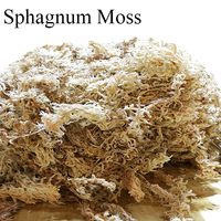 Home Garden Supplies Sphagnum Moss Moisturizing