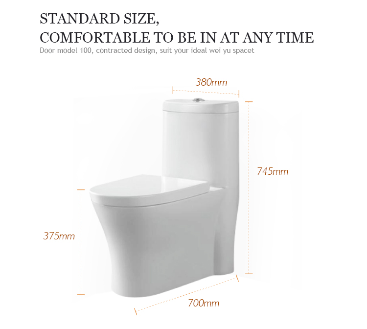 Streamline appearance design one-piece siphonic washdown indian style dual flush western toilet