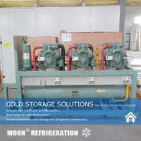Semi-hermetic Air-cooled Copeland Condensing Units For cold room