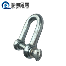Made in China factory galvanized D chain shackle