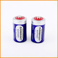 Everbright Brand R20 UM-1 D Size Battery