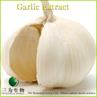 100% Pure Garlic Extract 1% Allicin Powder