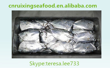 frozen moonfish ,mene maculata ,wholesale, frozen seafood,