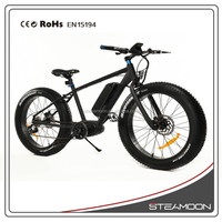 Hot Sale Popular High Quality Powered Strong Beach Fat Tire electric dirt bikes for adults